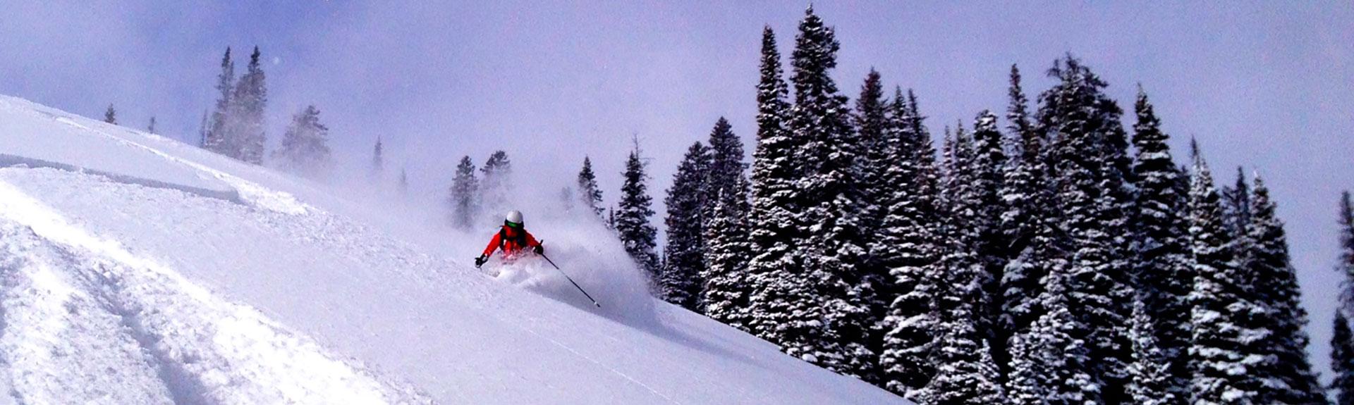downhill-ski-ss
